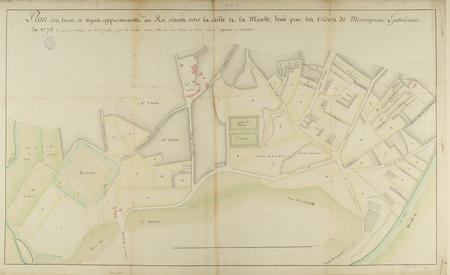 Plan des terres et des vignes appartenantes au roi situées entre la Seille…