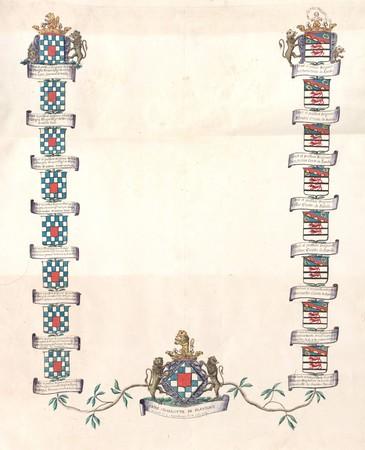 Arbre de lignes d'Anne Charlotte FLAVIGNY