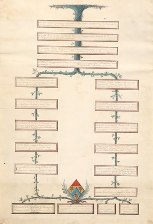Arbre de lignes d'Anne-Emilie-Marie-Louise PICOT de DAMPIERRE