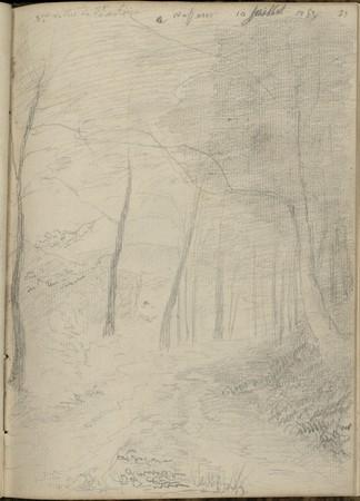 3e vallée de saint Antoine…, 10 juillet 1852