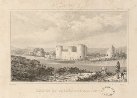 Ruines du château de Savigny