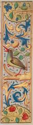 Bandeau marginal avec un oiseau