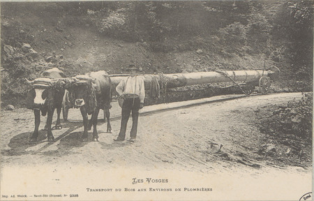 Transport du bois aux environs de Plombières