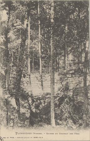 Plombières (Vosges), Ruines du Château des Fées