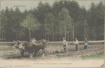 Les Travaux à la campagne - Le Labourage