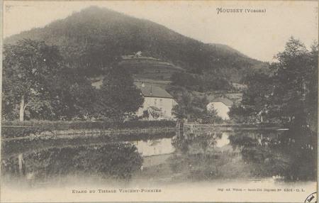 Moussey (Vosges), Étang du tissage Voncent-Ponnier