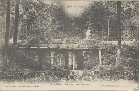 Moussey, Le Pont des Chavons