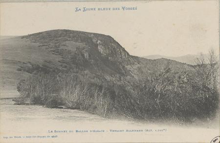 Le Sommet du Ballon d'Alsace, Versant allemand (Alt. 1.248m)