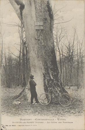 Martigny - Contrexéville -Vittel - St-Ouen-les-Parey (Vosges), Le Chêne de…