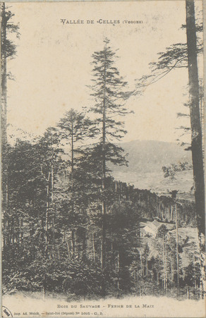 Vallée de Celles (Vosges), Bois du Sauvage, Ferme de la Maix