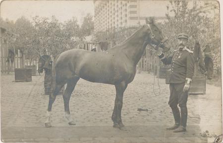 [Épinal, Un Militaire et son cheval]