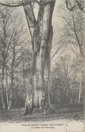 Forêt de Saint-Ouen-les-Parey, Le Chêne des Partisans
