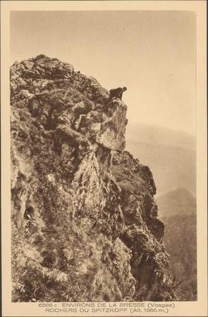 Environs de La Bresse (Vosges), Rocher du Spitkopf [..]