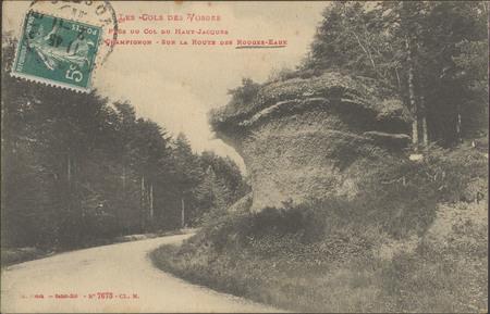 Près du Col Haut-Jacques, Champignon, sur la route des Rouges-eaux