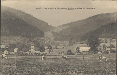 Pâturages du Rudlin et vallée du Louchbach
