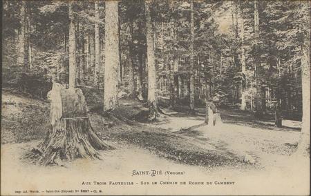 Saint-Dié (Vosges), Aux trois fauteuils, Sur le chemin de ronde du Cambert