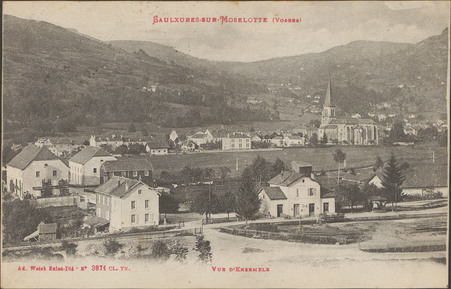 Saulxures-sur-Moselotte (Vosges), Vue d'ensemble