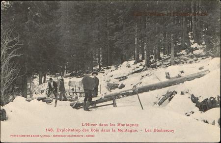 Exploitation des bois dans la montagne, Les Bûcherons