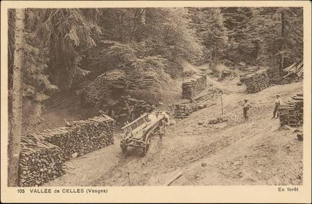 Vallée de Celles (Vosges), En forêt