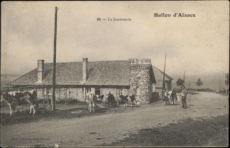 Ballon d'Alsace, La Jumenterie