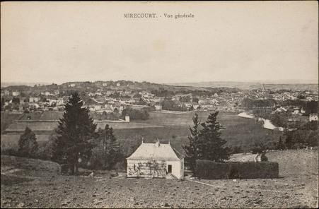Mirecourt, Vue générale