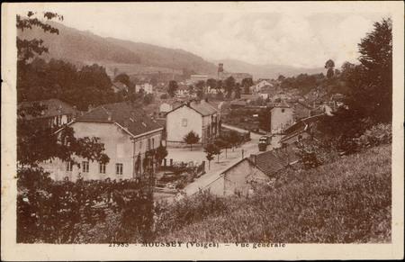 Moussey (Vosges), Vue générale