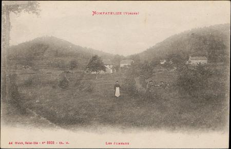 Nompatelize (Vosges), Les Jumeaux
