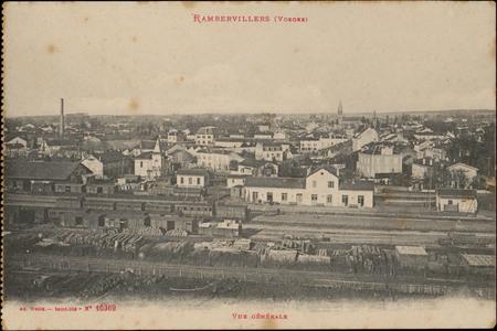 Rambervillers (Vosges), Vue générale