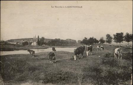 La Meurthe à Laneuveville