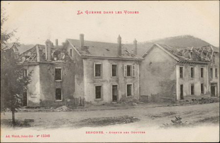 Senones, Avenue des Gouttes