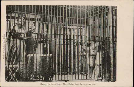 Ménagerie Camillius, Mme Delait dans la cage aux lions
