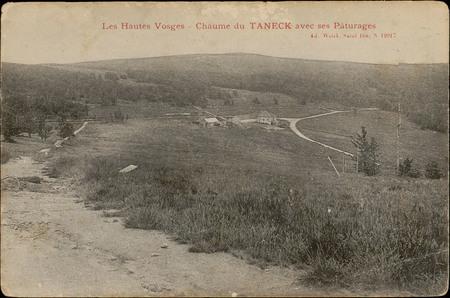 Chaume du Taneck avec ses Pâturages