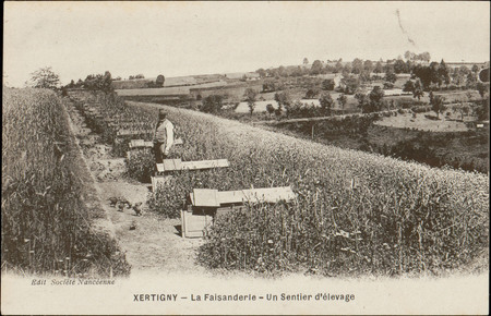 Xertigny, La Faisanderie, Un Sentier d'élevage