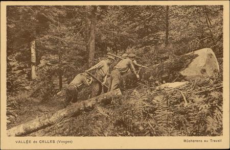 Vallée de Celles (Vosges), Bûcherons au Travail