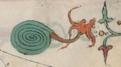 Dragon-escargot