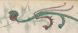Homme dragon