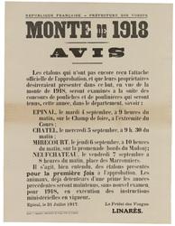 République française. Préfecture des Vosges. Monte de 1918. Avis. Les étal…
