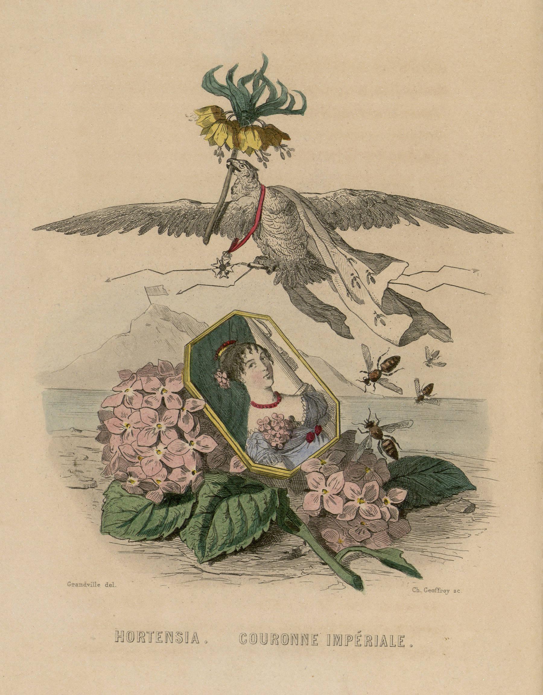 Contenu du Hortensia. Couronne impériale