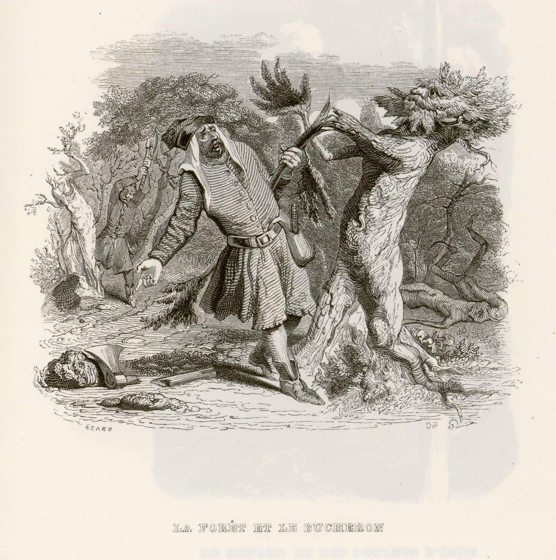 Contenu du La forêt et le bûcheron