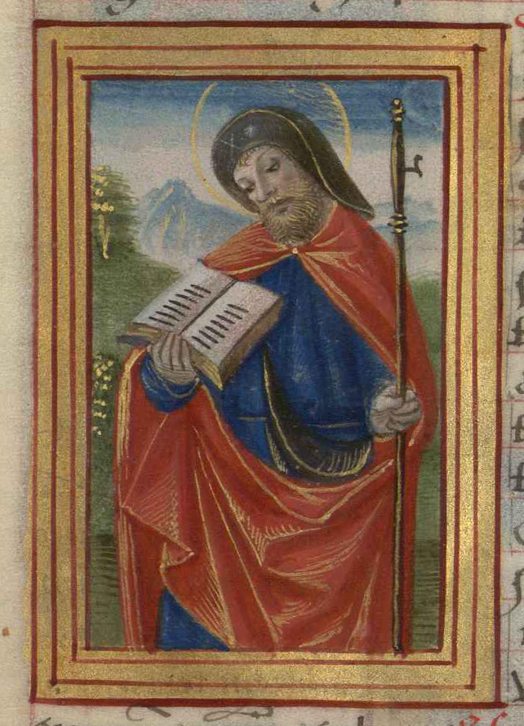 Contenu du Saint Jacques