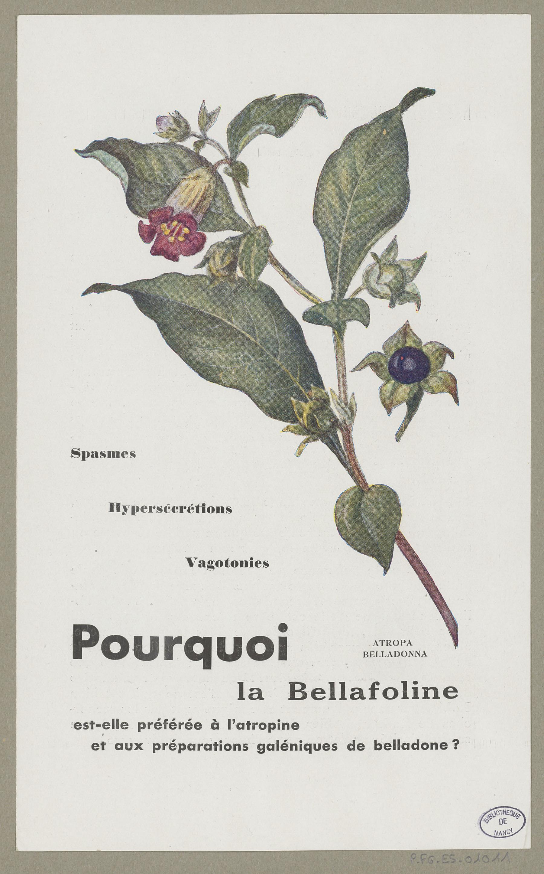 Contenu du La Bellafoline
