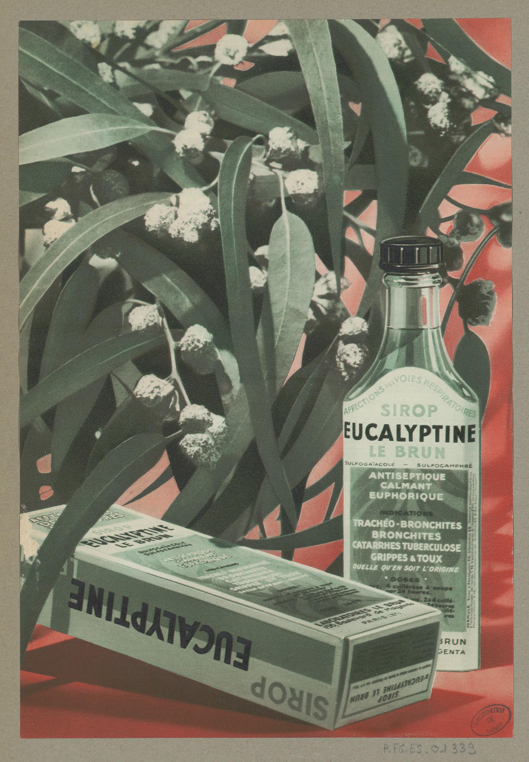Contenu du L'Eucalyptine