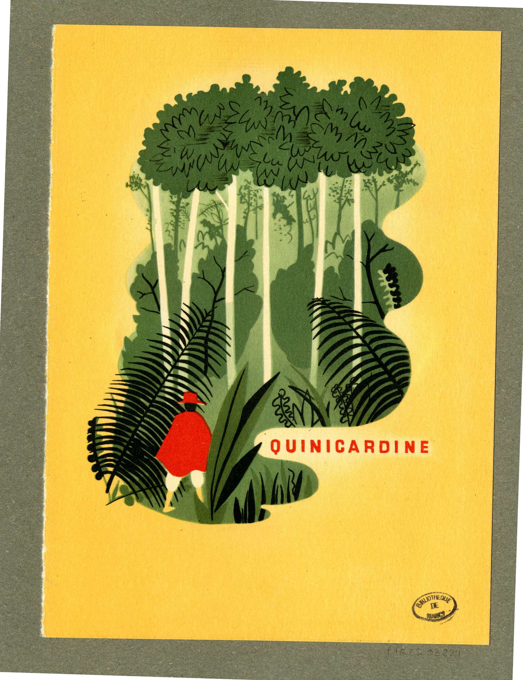Contenu du Publicité - Dans la Jungle