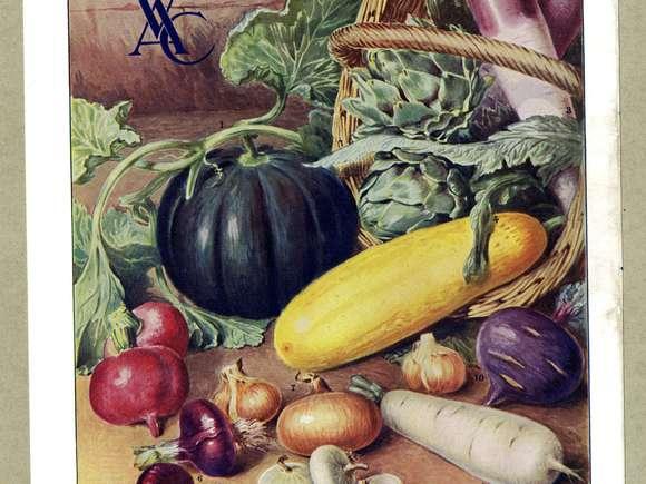 Le végétarisme