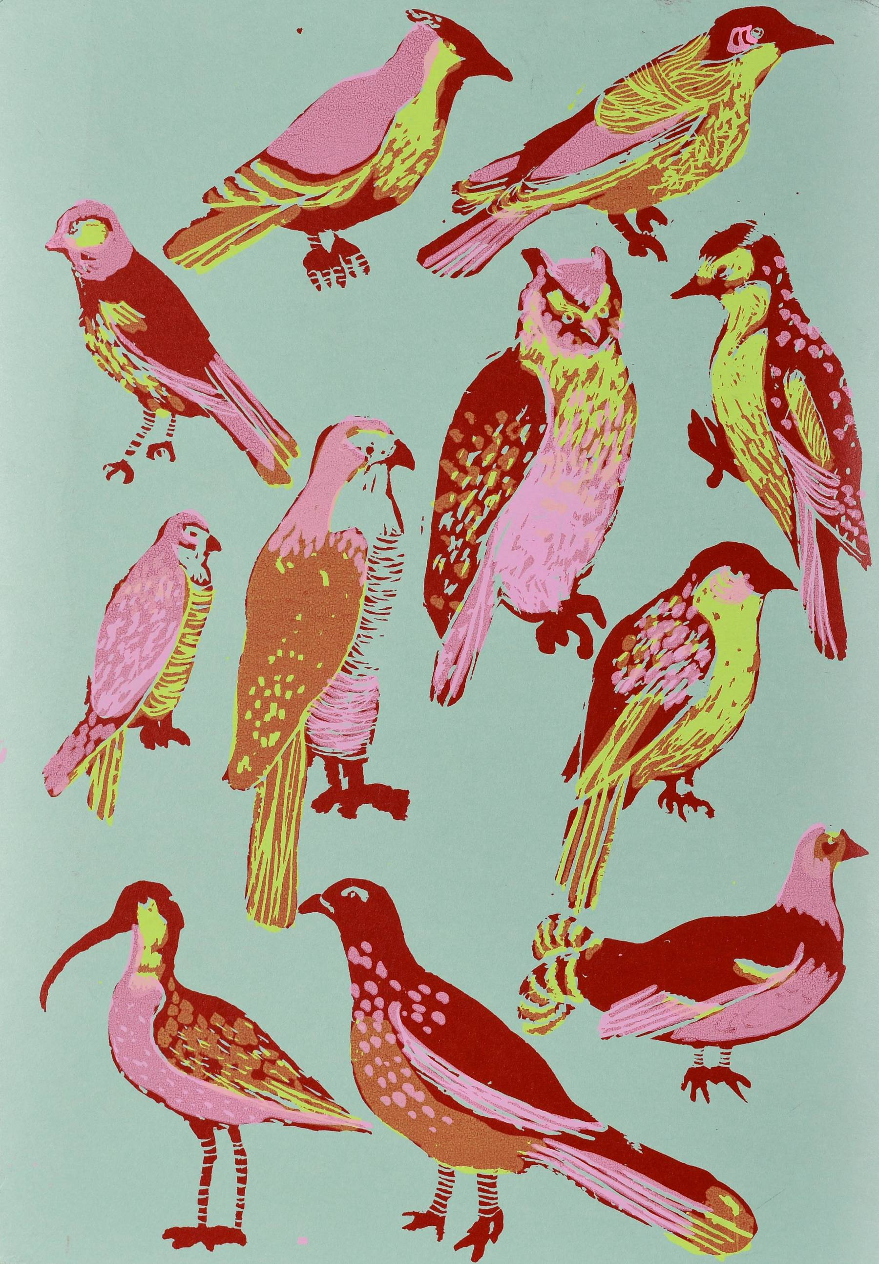 Contenu du Les oiseaux