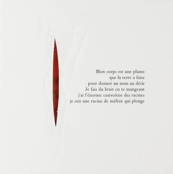 Contenu du Le printemps des poètes