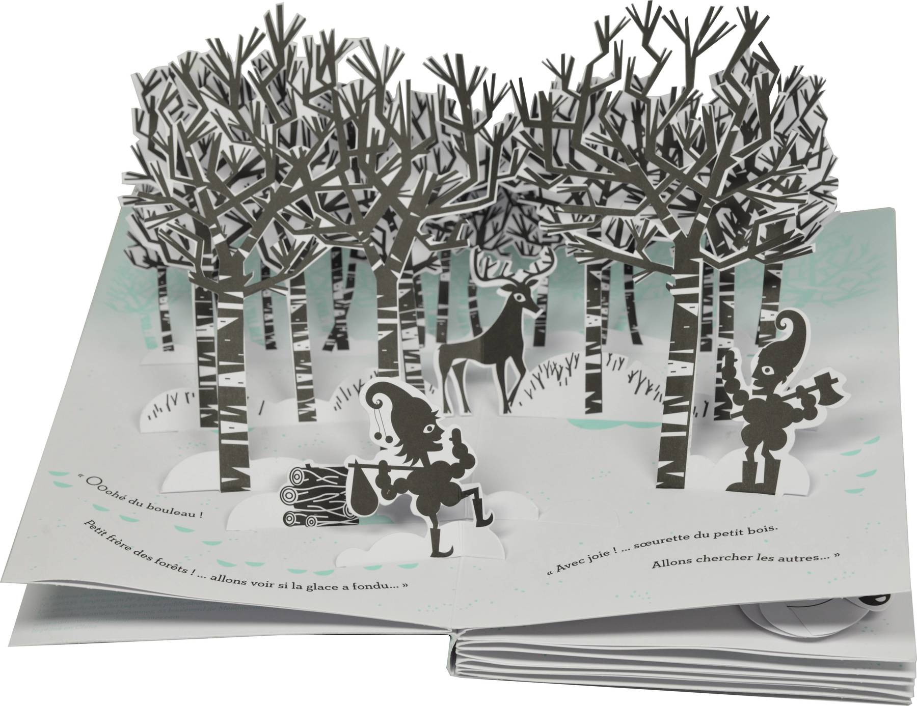 Contenu du La forêt de bouleaux