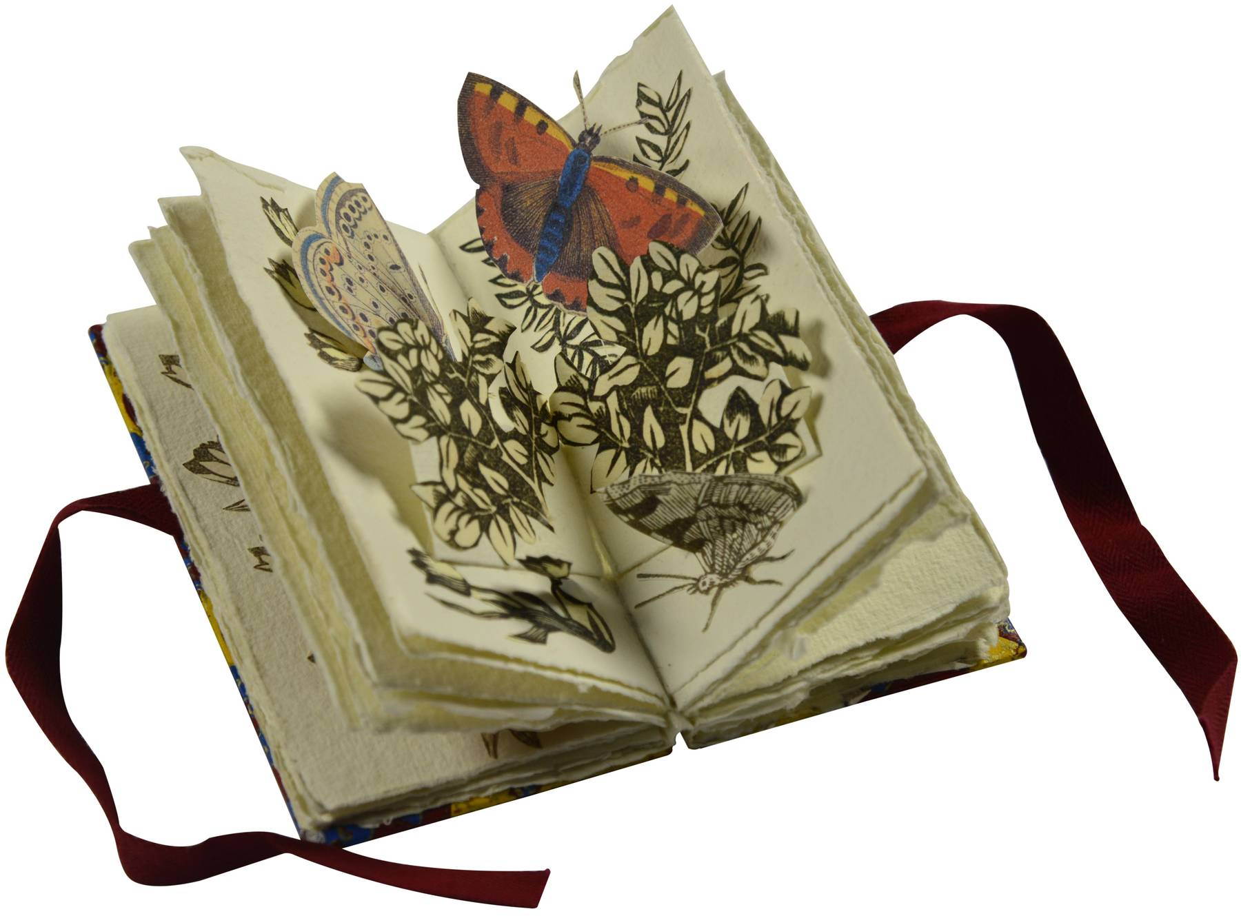 Contenu du Le vol des papillons sur un arbuste