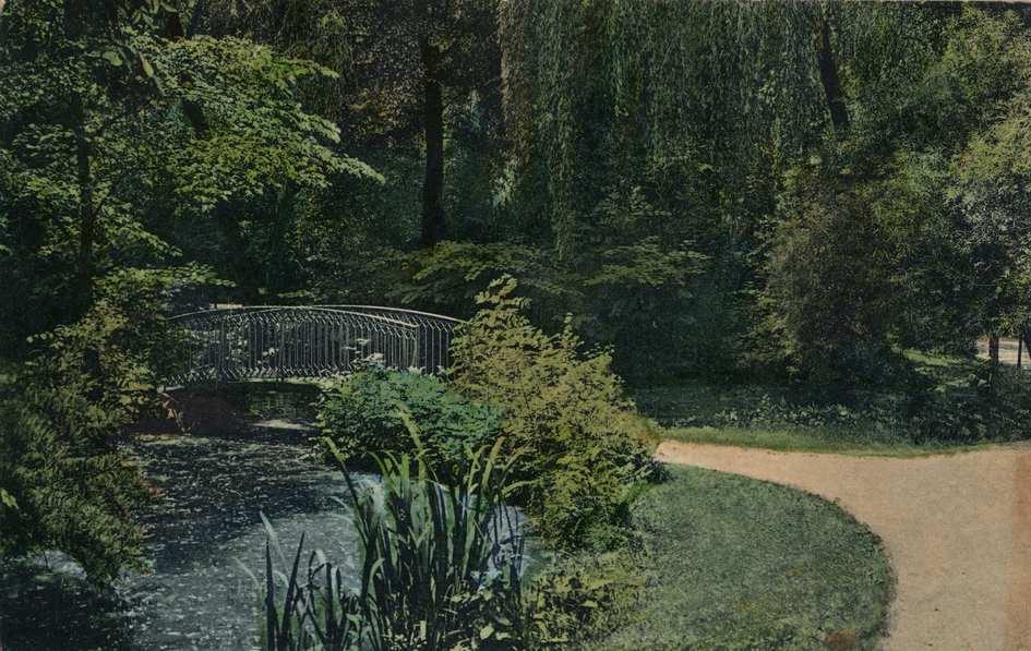 Contenu du Les secrets du jardin botanique de Metz