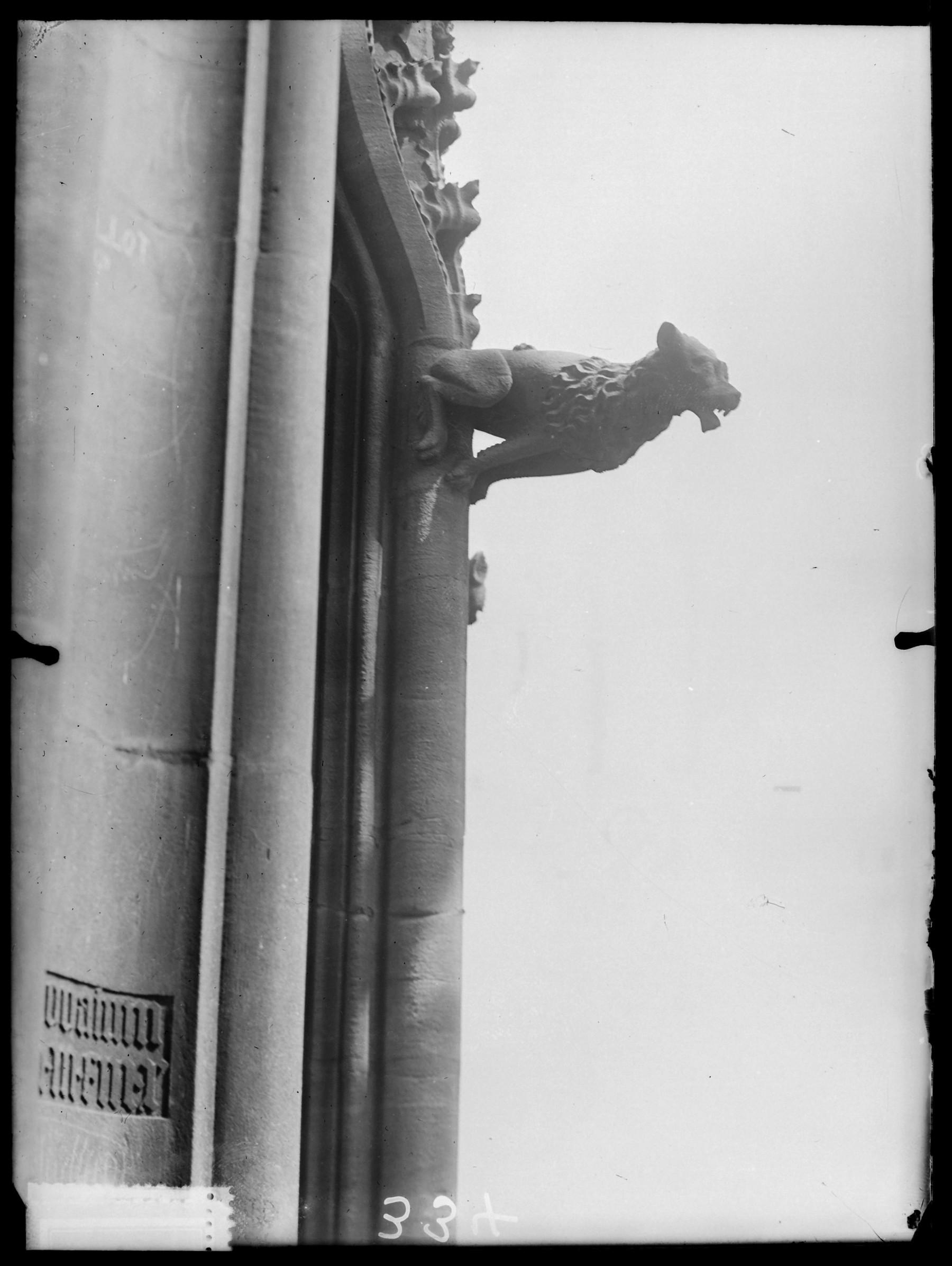 Contenu du Gargouille sur la cathédrale Saint-Étienne